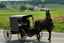 Amish country / Great stops in Lancaster, Bird-In-Hand, Amish farms
