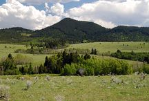 O'Donnell Mountain Meadows - A Montana Ranch For Sale by Swan Land Company / This Montana Property for sale near Deer Lodge offers beautiful mountain views, live water and plenty of wildlife.