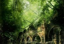 Beutiful scenery in old ruins