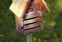 Bird boxes / by Ken Habgood