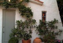 Courtyard herb garden