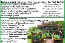 Essential Oils - Garden & Pests / by Bill and Stephanie Norman