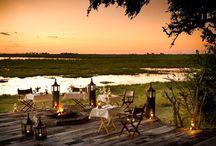 Have the Best Safari in Africa at Zarafa Camp, 2016 Safari Award-Winner for 'Best Safari Experience' / Looking for the best safari in Africa? Look no further than Zarafa Camp in Botswana, voted the 'Best Safari Experience' in Africa in the recent Safari Awards.