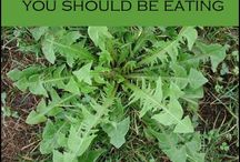 Weed Plants We Can Eat!