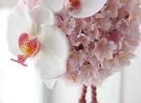 Bm flowers