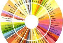 Tea Flavors and Aromas