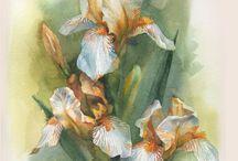 Анастасия Беседина flower rose animal wotercolor