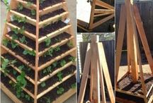 Pyramid and Vertical Planter models