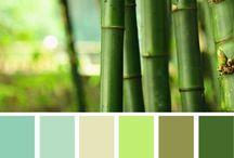 Palet culoare