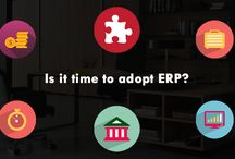 is it time to adopt ERP???