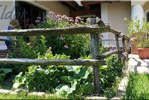 Fa termékek a kertben / Ágyásszegély, kerti szegély, rönk támfalelem, fakerítés, kerítéselem, pergola, szőlőoszlop