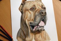 Dog drawings and paintings