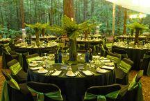 Rotorua Wedding Venues