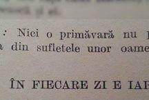 Citate în română