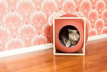 Design für Katzen
