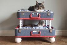 Cat Accessories / by 'Fetching' Underbite