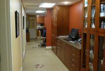 Veterinary clinic ideas