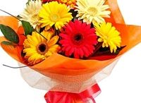 Online Flower Delivery / Phoolwala.com is one of the leading Online Gifts and Flower Delivery Site in India. Reach us for Flower Delivery in Bangalore, Flower Delivery in Mumbai, Flower Delivery in Pune, Flower Delivery in Kolkata. We have exclusive collection of Gifts based on various occasions like Holi, Diwali, Rakhi, Father's Day, Mother's Day, Valentines Day etc. Also reach us for Birthday Gifts and Anniversary Gifts in India