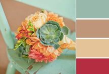 Paint combination / Paint combinations for projects
