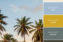 Praca kolory branding identyfikacja
