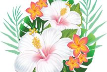 hawaiiwn flower