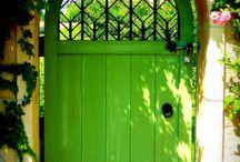 Something green!!! ⚓⚛⚃