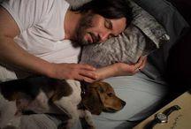 Keanu Reeves-dream man
