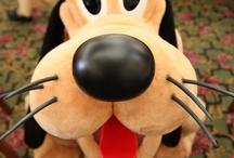 Disney! / by Kathy Shafer-Francis