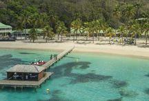 Club Med La Caravelle, Guadeloupe / Imaginez une baie protégée par une barrière de corail, où les eaux sont toujours chaudes...Ce Village donne le goût des sports nautiques et du farniente dans un cadre privilégié ouvert sur la culture d'une île métissée. Lors de votre séjours, vous aurez l'occasion de participer à de magnifiques excursions* dans les îles voisines, notamment Les Saintes et Marie-Galante. Pour savourer un poulet boucané face à la mer, dirigez-vous aux restaurants La Biguine ou l'Hibiscus.
