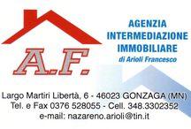 Agenzia Immobiliare Arioli, a Gonzaga (MN) / Compravendita appartamenti,ville singole,case a schiera,terreni edificabili,aziende agricole,locali commerciali e produttivi,affitti, stime,gestione aste