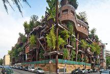 ツリーハウス  Treehouse