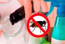 insecticidas ceseros