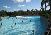 Disney World - Waterparks / by Couponing to Disney