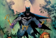 Batman / All things batman / by David Lawrence