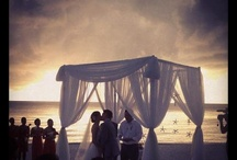 I've Succumbed - Dream Wedding