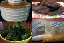 Dehydrator recipes and uses