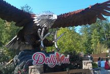 Dollywood & Dolly's Splash Country / by Visit My Smokies