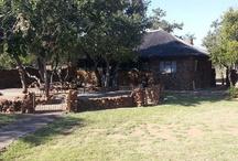 Bush Camp for Volunteers / The Bush Camp where Volunteers live on Mabulani Game Farm