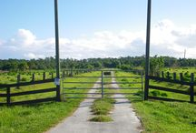 RANCH and Farms / Martin County, Florida. #Ranch area, Twenty-four 20 acre parcels, out in rural country area, yet not far to shopping and 35 minutes to beaches. Opportunity to have it all! #horses #cattle / by Florida Treasure Coast Real Estate
