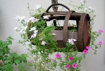 Hanging baskets / by Flower Empowered