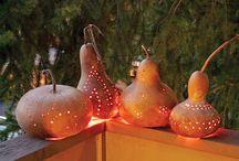 Gourd life