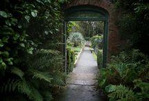 secret garden / by Laura Jane Smith (Godfrey)