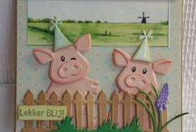 varkens kaarten