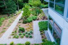 Contemporary landscape design by Stopa Landscaping  / Working closely with the homeowner, we were able to bring the customers visions and our visions of the properties full potential to life. The landscapes and plantscapes accentuate this home