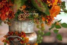 COLORS  OF  AUTUMN (barwy jesieni)