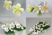 Cukor virágokMeglátogatandó helyek