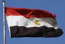 Egypt / eg.findiagroup.com