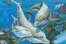Delfini Punto Croce