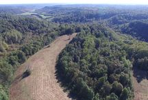 11/16/17 ONLINE AUCTION: 31+/- Acres of Open Rolling Fields / ESTATE AUCTION featuring 31+/- ACRES  OPEN ROLLING FIELDS - WOODED RIDGE.  Daddy Green Road, Christiana, Tennessee in Coffee County - Beechgrove Area. The Green Estate.  BID NOW ONLINE ONLY Until Thursday, November 16th, 2017 @ 7:00 PM. Bidding has ended for this auction. Stay tuned to http://www.comasmontgomery.com/ for more upcoming auctions.   #realestate #land #auction #property #christiana #beechgrove #coffee #rutherford #murfreesboro #nashville #pasture #field #investment #acres #tennessee