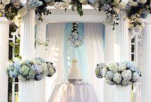 Wedding in blue